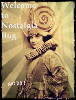 Welcome to the Nostalgia Bug Website